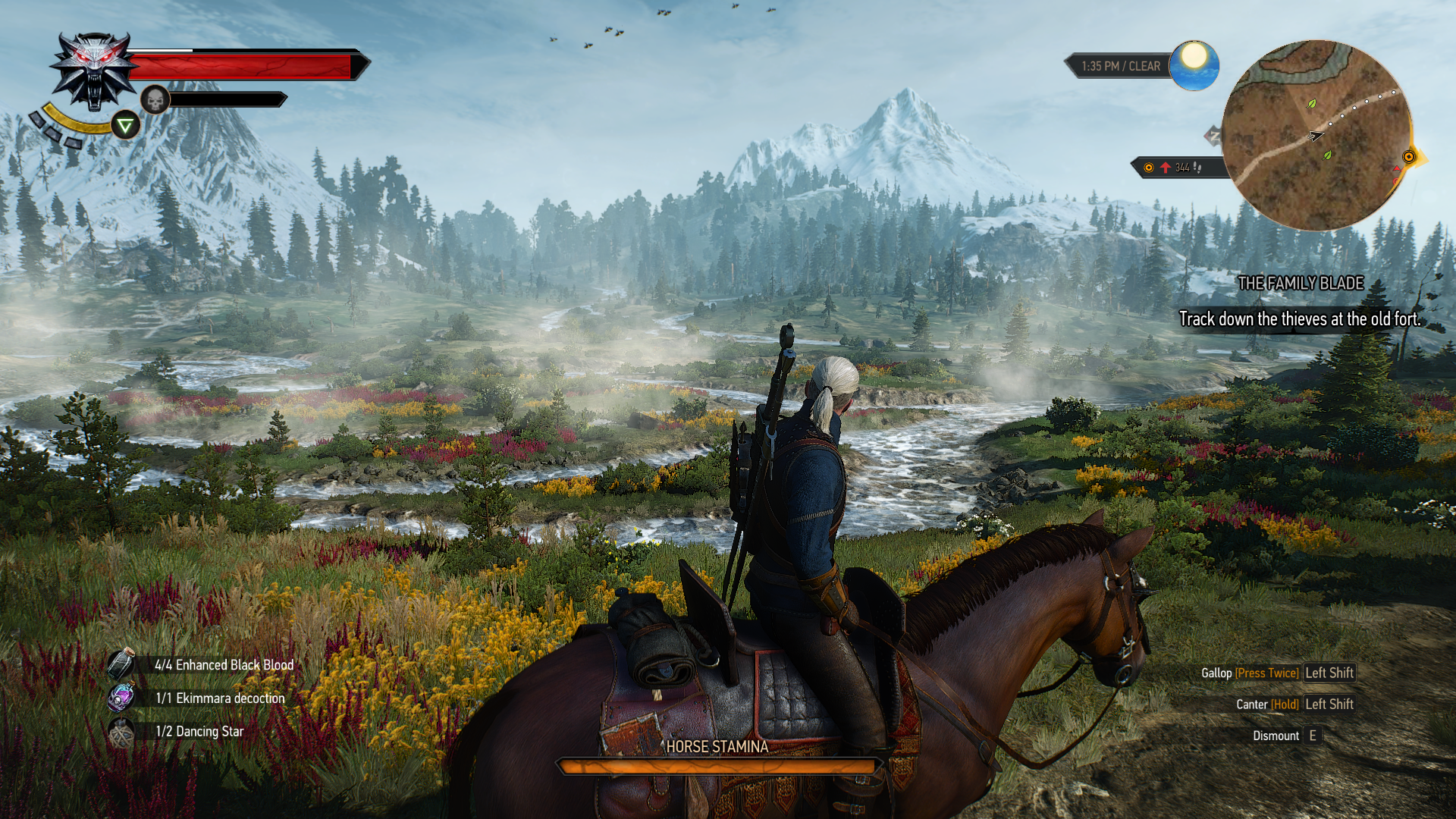 the_witcher_3_wild_hunt_review_screenshot_PC_N2 (65)